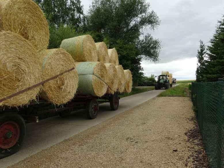 Travaux_des_champs_2_tracteurs2_Walhain_St_Paul_et_Nil_St_Vincent_2015-07-14.jpg
