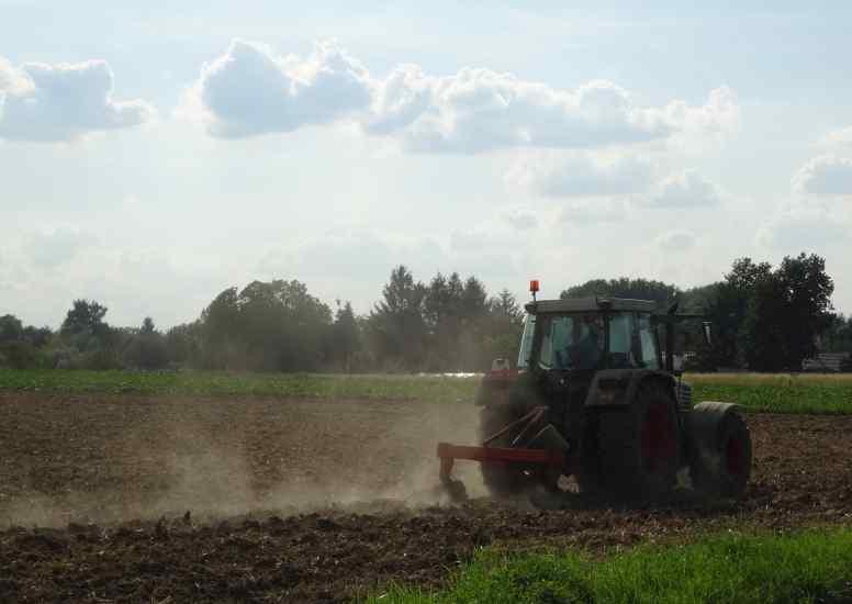 Les travaux des champs touchent à leur fin…